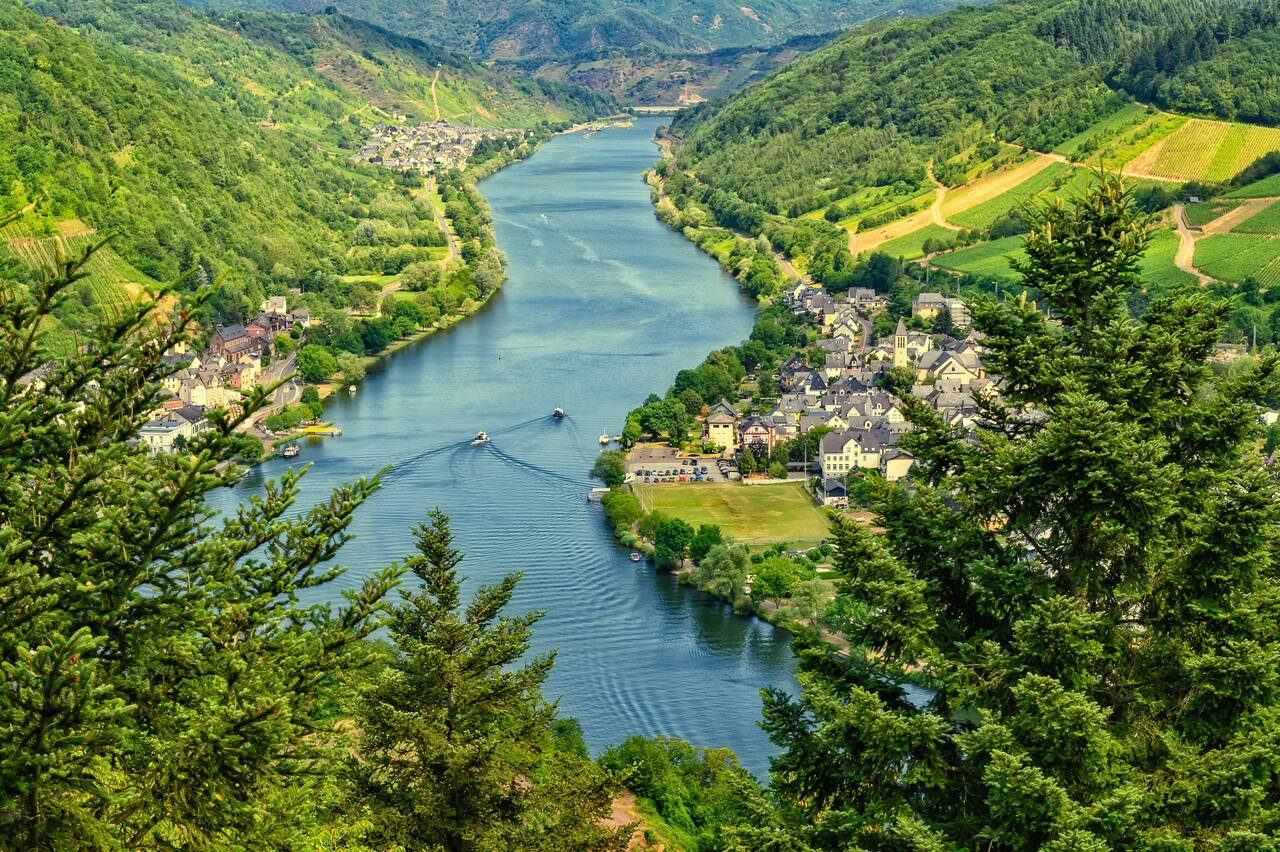mosel, view, river - Alf an der Mosel