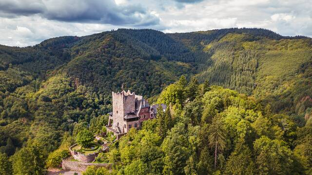 Burg Arras at the Mosel in Germany. - Alf an der Mosel